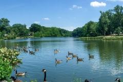Haddon-Lake-3