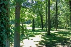 maria-greenwald-8