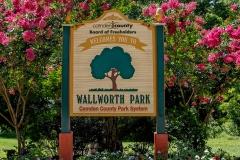 Wallworth-Park-1
