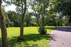 Wallworth-Park-7