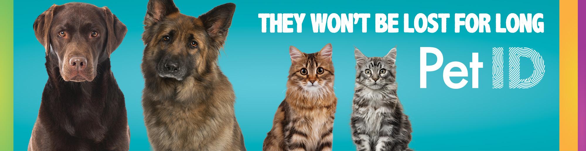 Pet ID Campaign